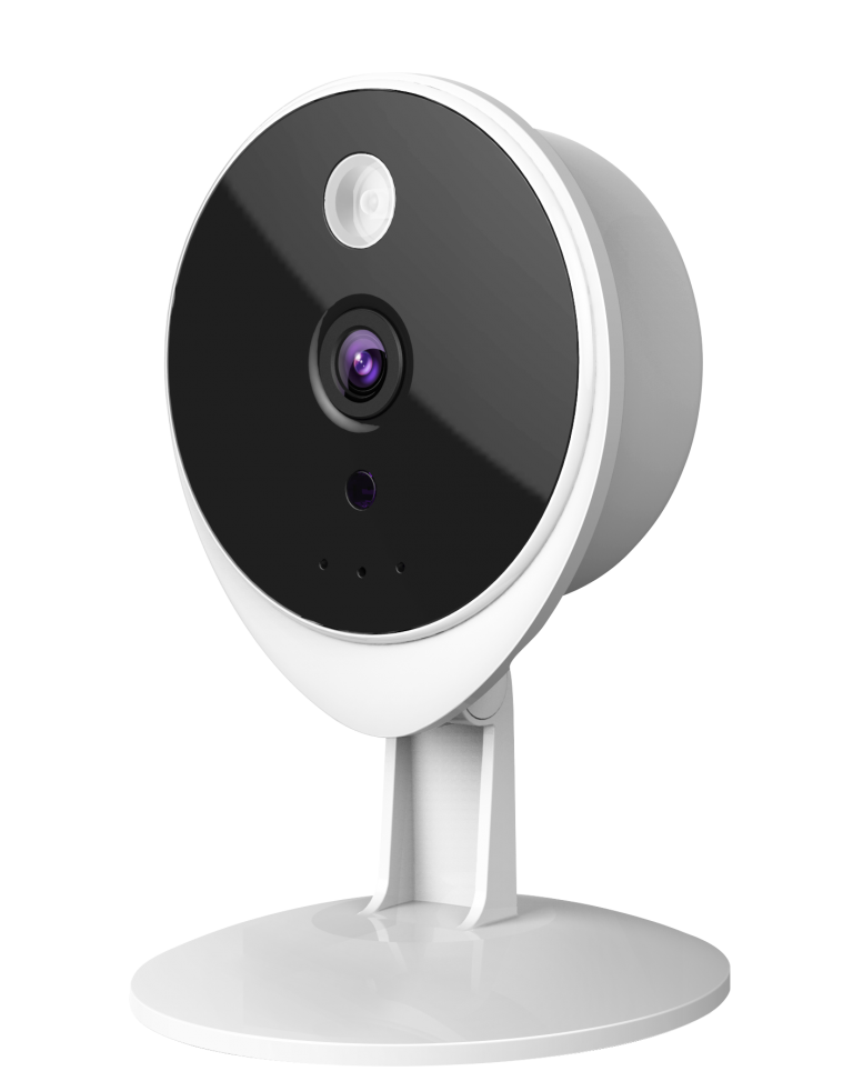 Foscam Indoor Camera